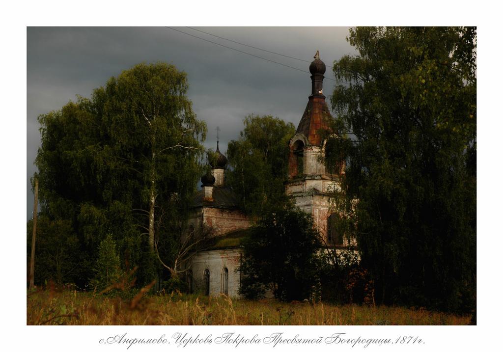 Пауки волгоградской области фото с названиями